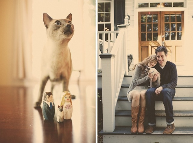 cat-wedding-121